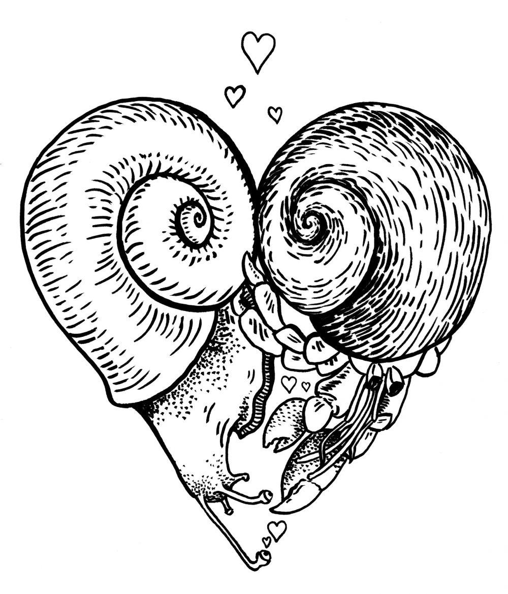 snail_hermit_love2