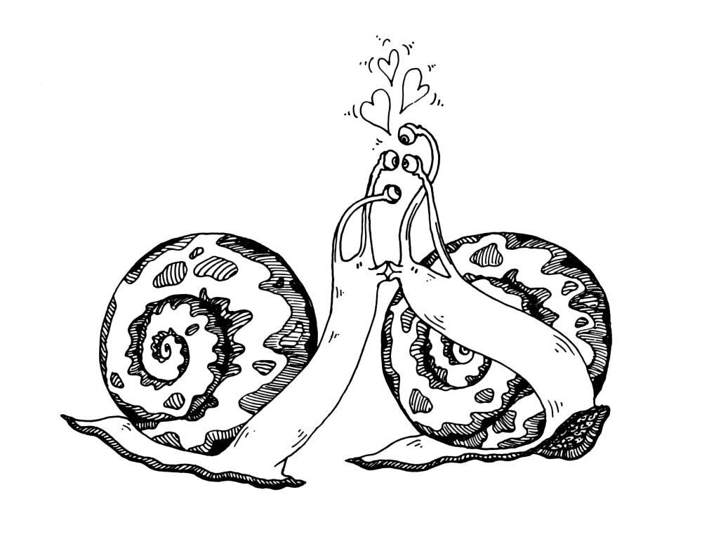 snailskissing2
