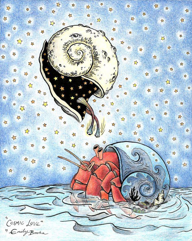 Snail & Hermit Crab