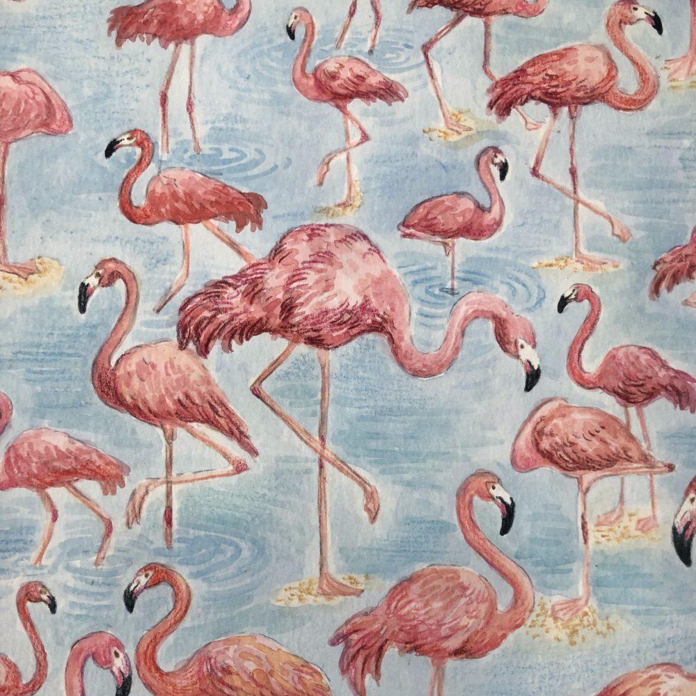 flamingo-detail-color3-sq