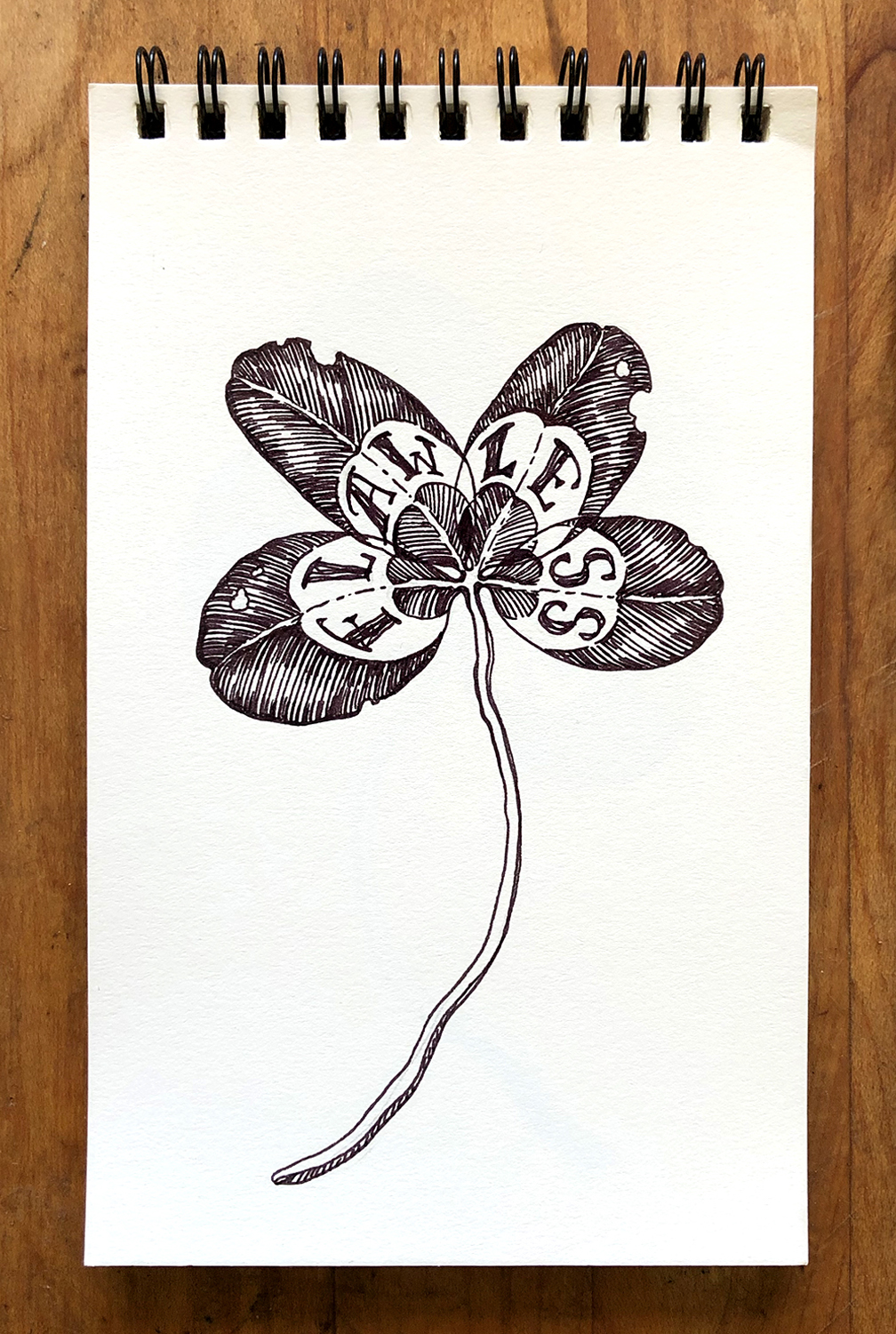 Clover Drawings